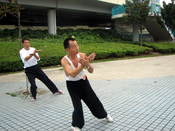 lü a perfect move for your tai chi to combine with peng